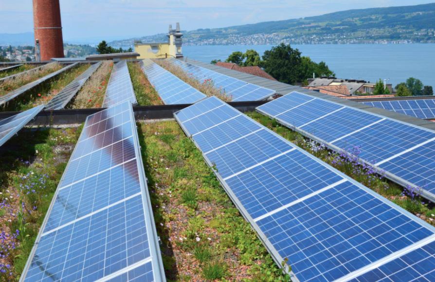 Musterhafte Dachbegrünung mit Solaranlage in der Schweiz