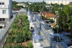 Obst und Gemüse frisch vom Dach