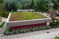 Gartenschauen und Projekte